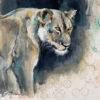 Acrylic painting of watchful lioness Wildlife art Sara Sian
