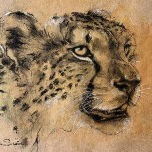 African symbols Leopard sketch