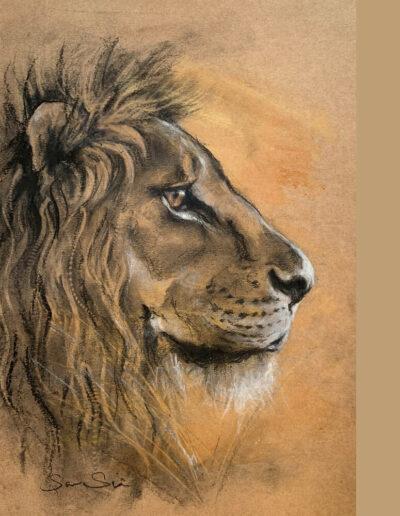 Wildlife art Lion sketch Sara Sian