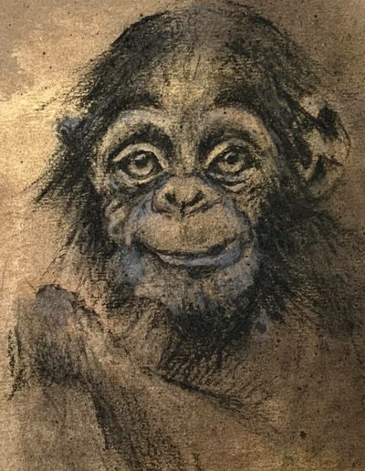 Chimp Wildlife art